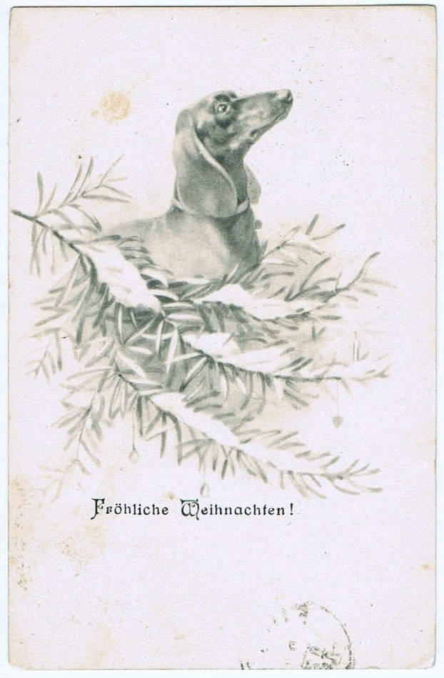 Dachshund on vintage Christmas Postcard 1906
