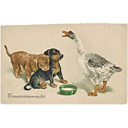 Vintage postcard with Dogs and Goose