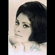 Sophia Loren Autograph on Photo CoA