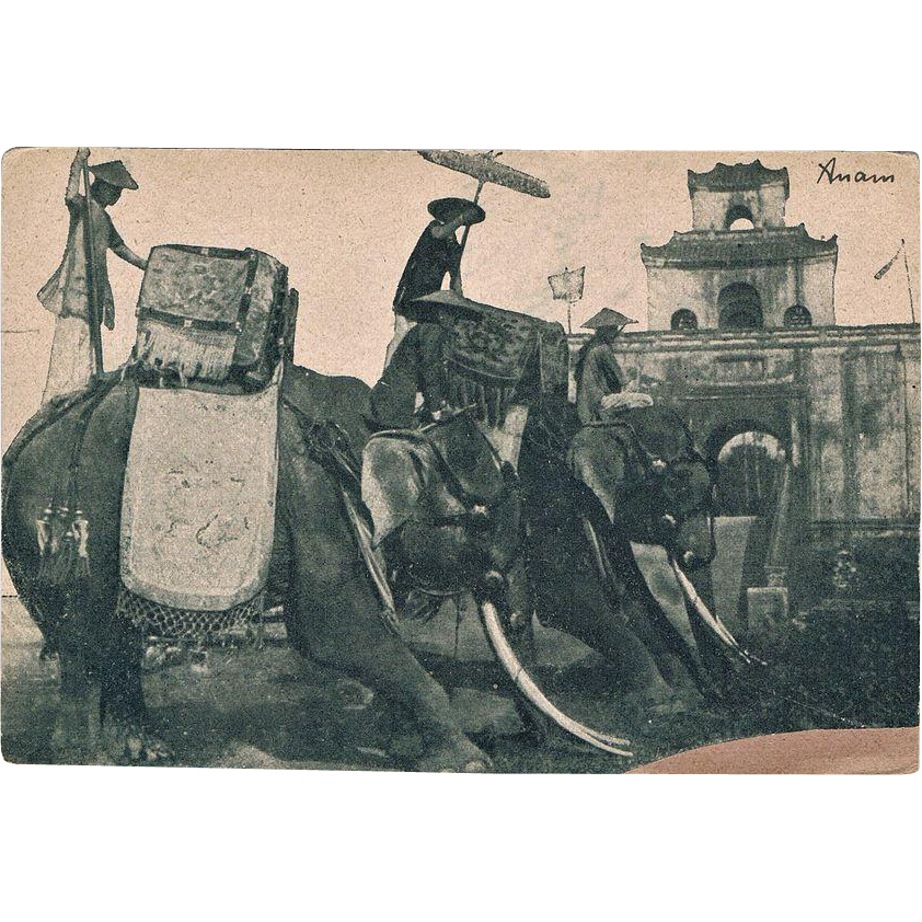 Antique Postcard with Sacred Elephants in Annam
