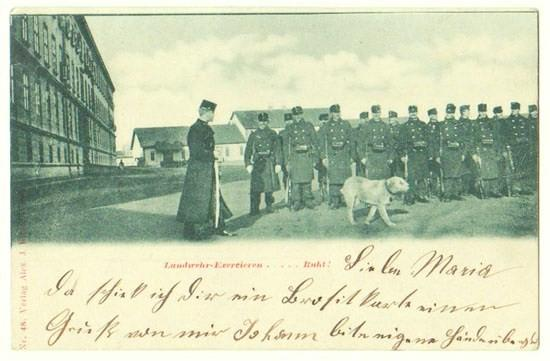 Austrian Militia Exercising. Soldiers and Dog.