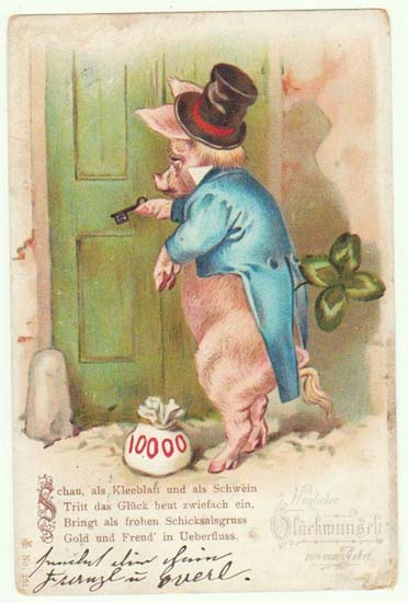 Old New Years Postcard with huge Pig. 1902