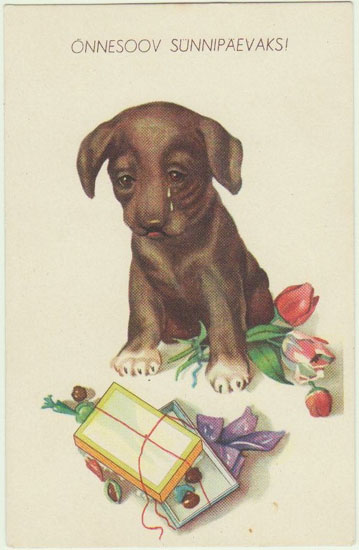 Vintage Kitsch Postcard with Dachshund