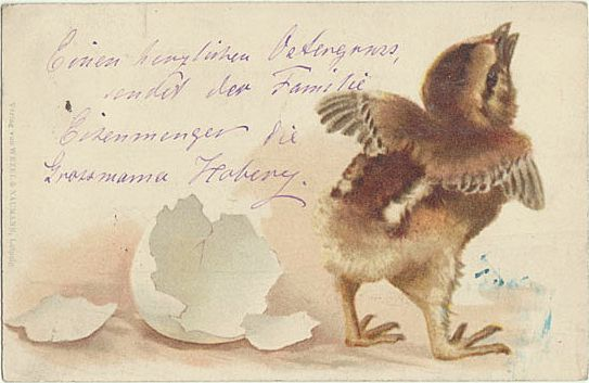 Funny Easter Postcard. Poland to Austria. 1900