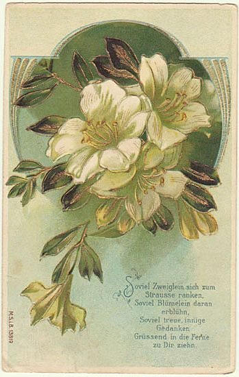 Embossed Art Nouveau Postcard with Flower Motif.