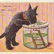 2 Funny Vintage Postcard with Dogs.