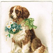 Vintage Postcard with Dog presenting Flowers, 1923