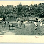 Old Ceylon Postcard: River Scene