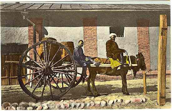 1919: Vintage Postcard: Means of Transport in Central Asia.