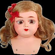 Antique German celluloid doll shoulderhead turtle mark sleep eyes original wig Rheinische Gummi