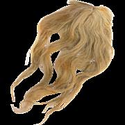 Antique doll wig long blonde human hair hand sewn cloth wig cap 11 inch head circ.