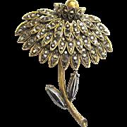 Weiss Chrysanthemum Brooch/Pin