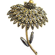 Weiss Chrysanthemum Brooch/Pin