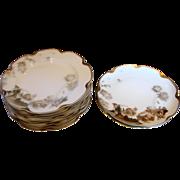 French Haviland Limoges Set 10 Breakfast or Lunch Plates Feu de Four c 1903