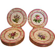 "English Staffordshire Set 12 9"" Hand Painted Flower Botany Plates Pink Rims Raised Ribbons c 1820 - 1850"