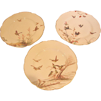French Haviland Limoges Set 3 Meadow Visitor Plates Birds c 1876 - 1880