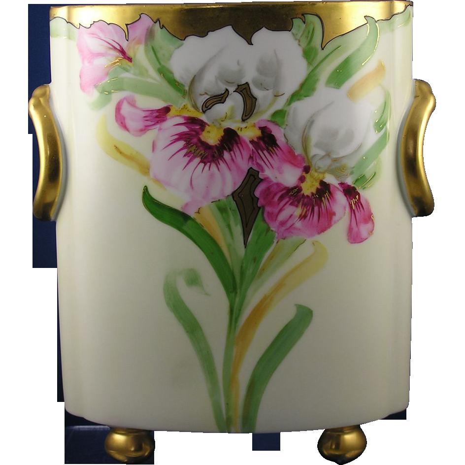 Heinrich & Co. (H&Co.) Selb Bavaria Iris Motif Cachepot/Vase (c.1900-1940)