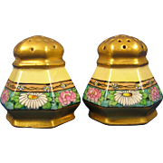 PH Leonard Austria Arts & Crafts Enameled Floral Motif Salt & Pepper Set (c.1890-1920)
