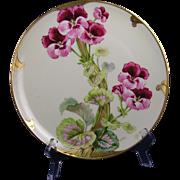 "D'Arcy's Art Studio Kalamazoo, MI Haviland Limoges Geranium Design Plate (Signed ""Harno""/c.1900-1920)"
