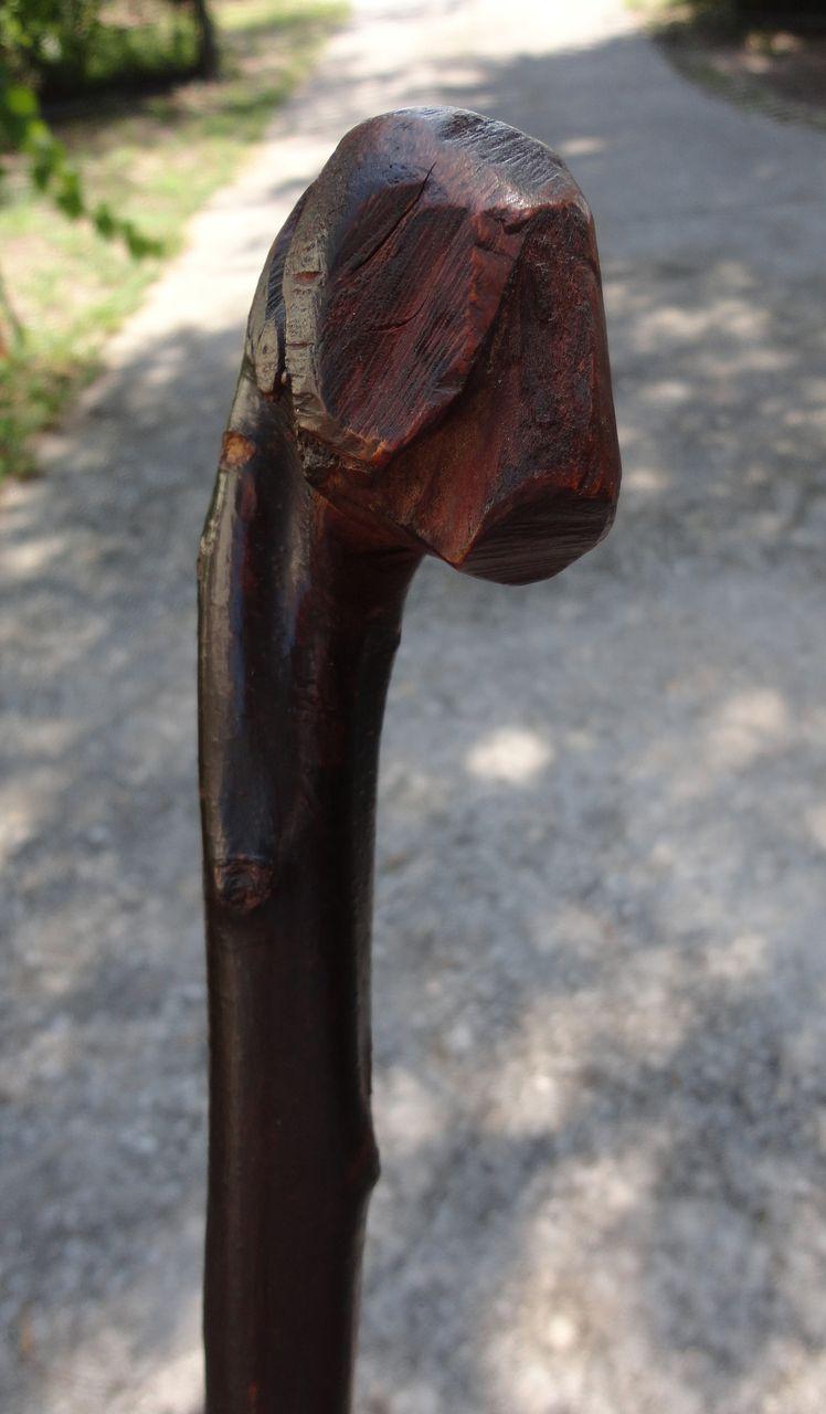 Folk Art Cane with Dog's Head