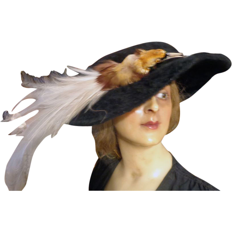 Incredible Edwardian Ladies Bird Hat with Beaver Skin