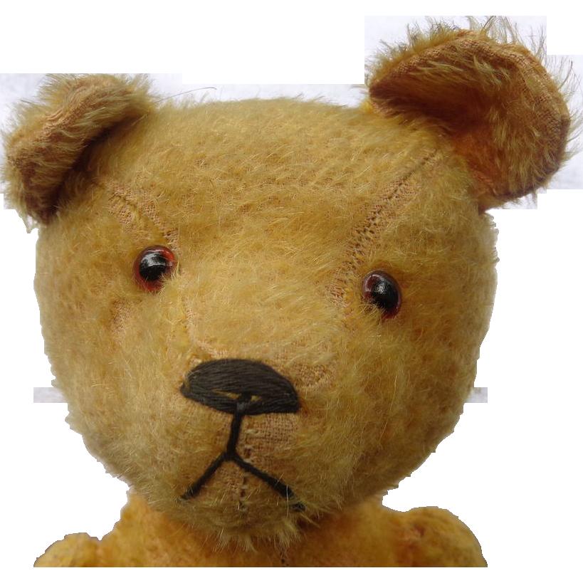 c.1915 Humpback Swivel Head Teddy Bear with Unusual Expression
