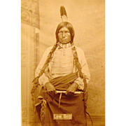 D.F,Barry Cabinet Photograph of Low Dog Oglala Lakota Chief Bismark Dakota Territory