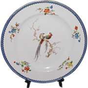 Theodore Haviland Limoges Paradise 9 1/2 inch Round Dinner Plate