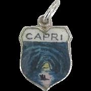 Vintage Isle of Capri Italy Enamel 800 Silver Travel Shield Charm