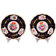 Pair of Early Hand Painted English Derby Plates