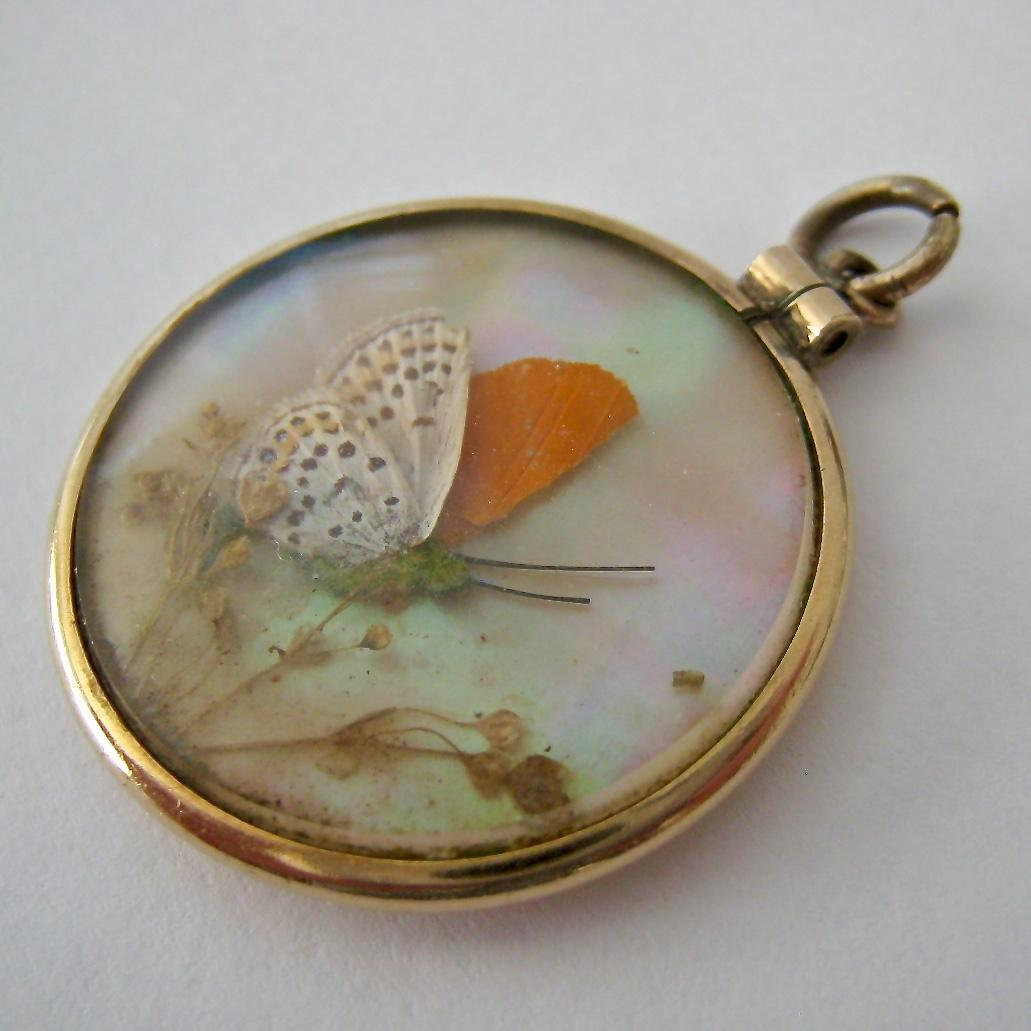 8k 9k gold double sided butterfly wing glass locket pendant from roll over large image to magnify click large image to zoom mozeypictures Choice Image
