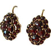 Gold Over 900 Silver Rose Cut Garnet Cluster Earrings Lever Back Czech Hallmarks