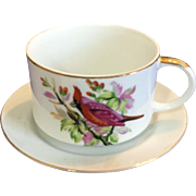 Vintage Large Cup And Underplate for Dessert, Soup, Coffee, with Pink Bird, Norcrest
