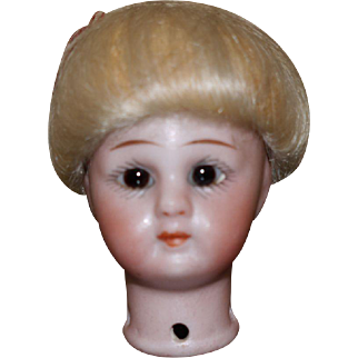 German Bisque doll head with Fabulous wig