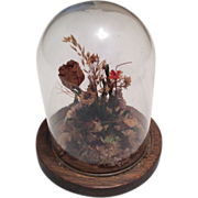 Old Glass Dome Wood Base for Doll Display