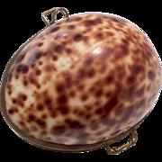 Shell Doll Purse