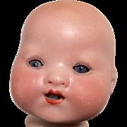 Bisque Baby Doll Head Antique German A.M.
