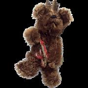 Adorable Vintage Miniature Schuco German Teddy Bear Berlin Bear with Crown