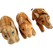 Vintage Steiff 3 Little Pigs Doll Size