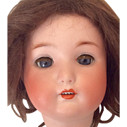 Beautiful German Bisque Doll Head with Great Wig 301