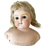 Lovely Antique Closed Mouth Bald Dome Turned Shoulder Doll Head German ABG 639