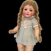 Great Original Wig Schoenau Hoffmeister German Antique Toddler Doll
