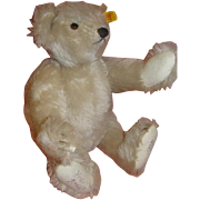 12 Inch Signed Vintage German Steiff White Bear #0167/32 1985