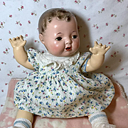 """MINT Vintage Effanbee Blue Roses Dimity Dress 15"""" Dy-Dee Jane  ~ Socks ~ Ducky"""