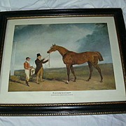 Old Borghese Framed Horse Art Plenipotentiary By Andrew Cooper