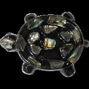 Abalone Turtle Dish