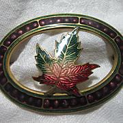 1909 Dated Enamel Maple Leaf Brooch