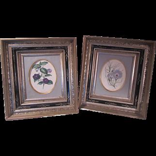 Pair Old Floral Prints In Black Carved and Gold Gilt Frames