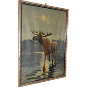 Antique Moose Print Circa 1910
