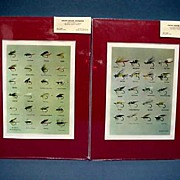 Two Prints of Darbee Tied Flies 50 % Off
